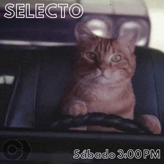 Selecto en el tráfico