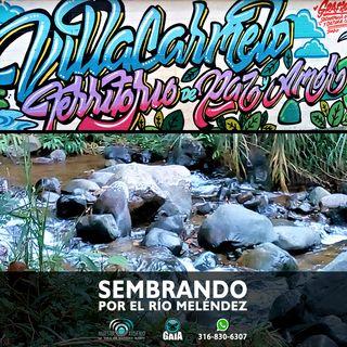 NUESTRO OXÍGENO Sembrando por el río Meléndez