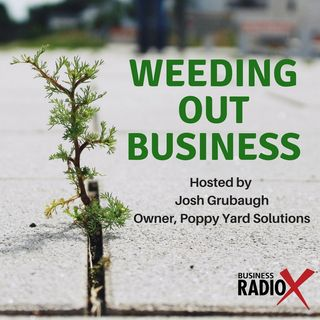 Tucson Business Radio - Weeding out Business ep 2