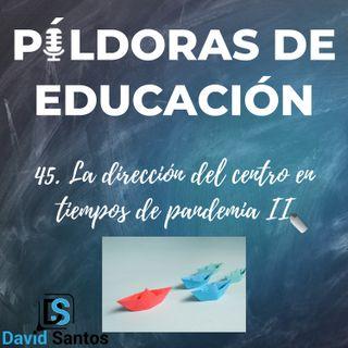 PDE45- La direccion del centro en tiempos de pandemia (II)
