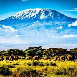 Kilimanjiaro, dalla savana al cielo