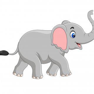 Gli elefantini 1cl (Antonella)