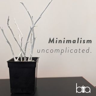 Ep 1 Introduction To Minimalism