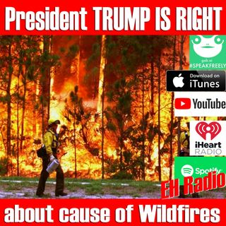 Morning moment President TRUMP IS RIGHT cause of wildfires Sep 7 2018