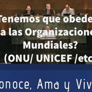 Episodio 119: 😔 ¿Tenemos que obedecer a las Organizaciones Mundiales? 🌎  Comentarios papa Francisco