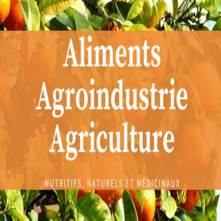 Les differents types d'agriculture