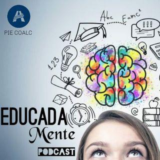 01 Que es el PIE? #EducadaMente