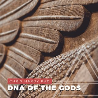 S01E08 - Chris Hardy PhD // Anunnaki, Nibiru, Planet X, DNA of the Gods