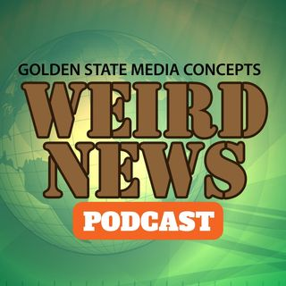 GSMC Weird News Podcast Episode 83 Pig hiding in Dunkin Donuts  and Airplane Poo