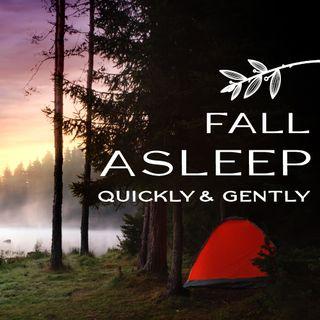 Fall Asleep Gently