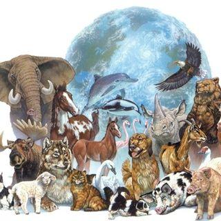 NUESTRO OXÍGENO 04 de octubre día de los animales