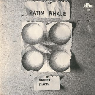 Satin Whale - Desert places