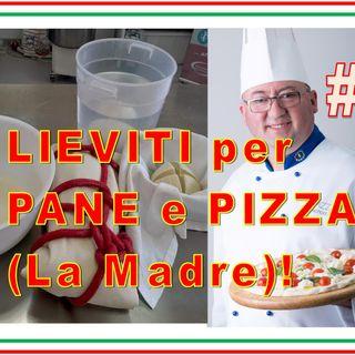 #23 - LIEVITO Madre per PIZZA e PANE
