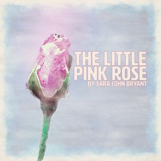 The Little Pink Rose by Sara Cohn Bryant