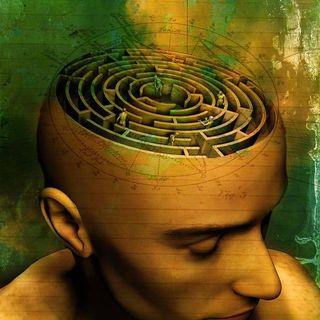 Las Falacias Cognitivas