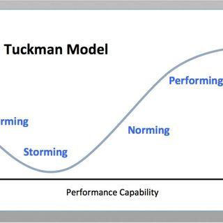60. Il ciclo di Tuckman: introduzione