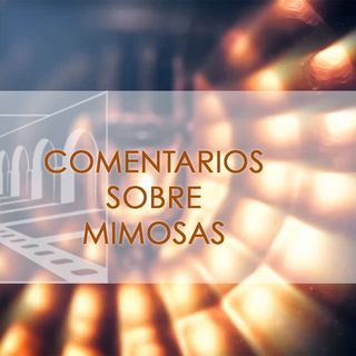 FICM 14.6 - Mimosas