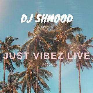 Just Vibez Live 004