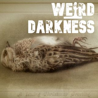 """MERRY CHRISTMAS, HERE'S A DEAD BIRD!"" and 9 More Dark True Holiday Stories! #WeirdDarkness"