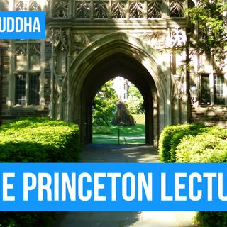 Changing minds and busting plateaus - The Princeton Lecture