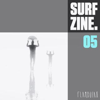 5 - Impactos da pandemia nas marcas de surfwear no Brasil e no mundo