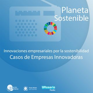 Innovaciones empresariales para la sostenibilidad: Casos de Empresas Innovadoras