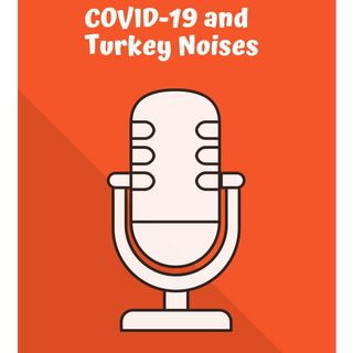 COVID-19 and Turkey Noises