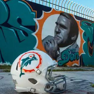 DT Daily 5/28: Columnist Chris Sciria Talks Dolphins Football