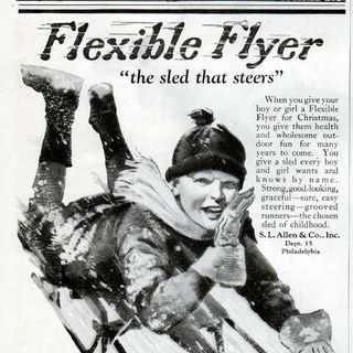 My Flexible Flyer