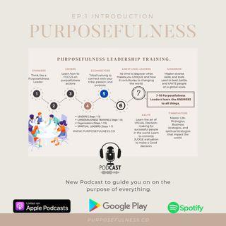 Episode 1 - PURPOSEFULNESS: Omniology