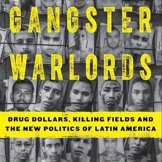 Gangster Warlords: Drug Dollars, Killing Fields - Ioan Grillo