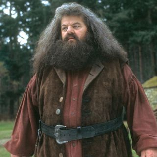 8 Things You Didn't Know About Hagrid