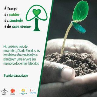 CUIDAR DA SAUDADE - FINADOS 2020 - CNBB