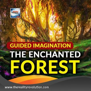 Guided Meditation The Enchanted Forest