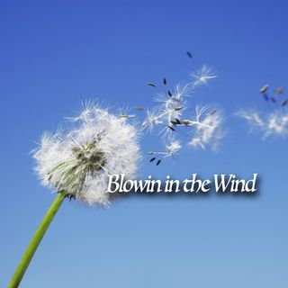 Sarah-Mike-Blowin In The Wind