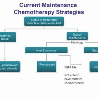 Highlights in Lung Cancer, 2013, Part 5: Maintenance Therapy in Advanced NSCLC (video)