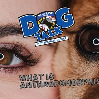 What is Anthropomorphism ep 40 5-11-2021