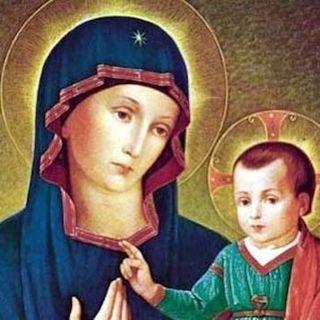 Domingo XII del T.O. Nuestra Señora de la Consolata