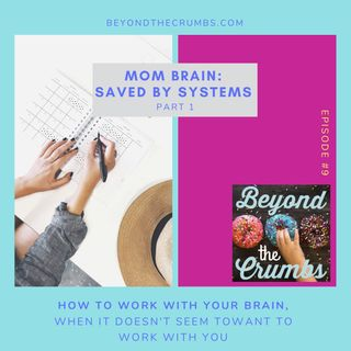 9. Mom Brain: Saved by systems, part 1