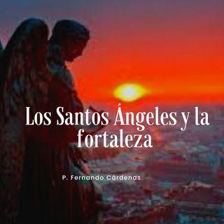 Los Santos Ángeles: La paciencia y la fortaleza