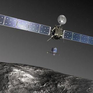 298-Rosetta
