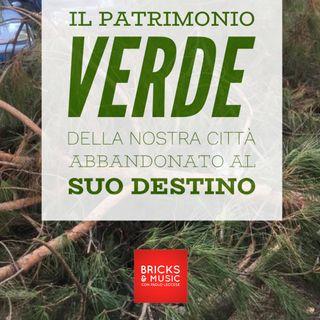 BM - Puntata n. 67 - Il patrimonio VERDE di Roma abbandonato al suo destino