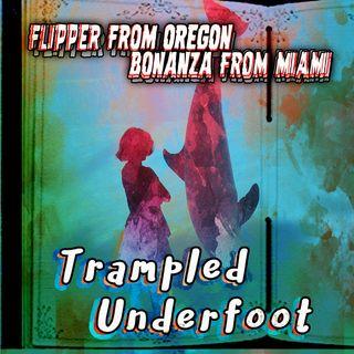 10 - Flipper from Oregon, Bonanza from Miami