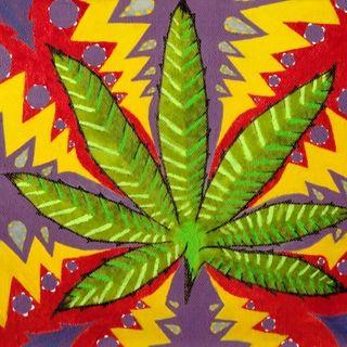 Drug Tuth Network - 03/23/17