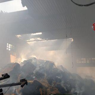 Deposito di balle di fieno a fuoco: in fiamme 1000 quintali di foraggio