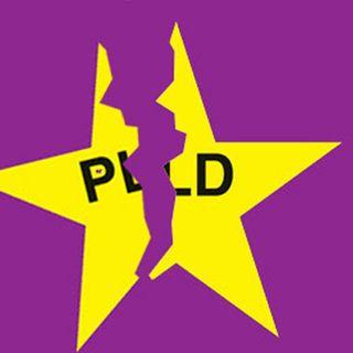 ¡Se rompió la taza! La inminente división del PLD