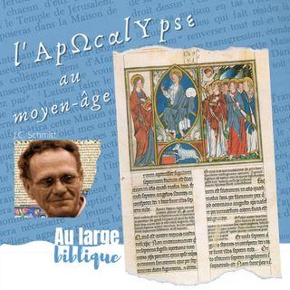 #235 Le moyen-âge et l'Apocalypse (J.C. Schmitt)