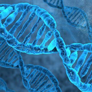 Episode 99 - CRISPR
