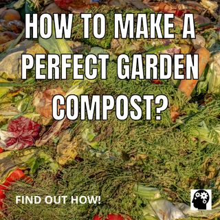 How To Make A Perfect Garden Compost?
