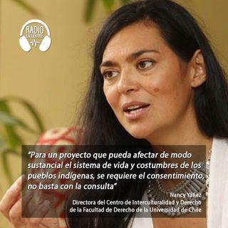 Protocolos Autonómicos de Consulta Previa en el contexto Mapuche